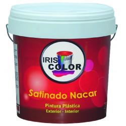 Pintura Plastica satinada NACAR 14LT
